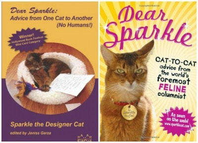 Sparkle_the_Designer_Cat