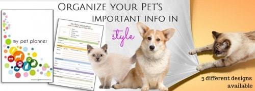 digital_pet_planner