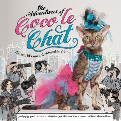 Coco Le Chat