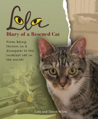 Lola_rescue_cat