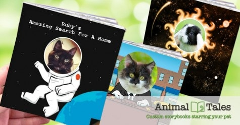 Animal-Tales