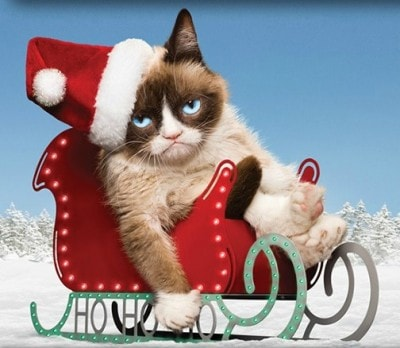 Grumpy-Cats-Worst-Christmas-Ever