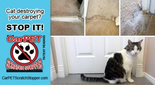 carpet-scratch-stopper