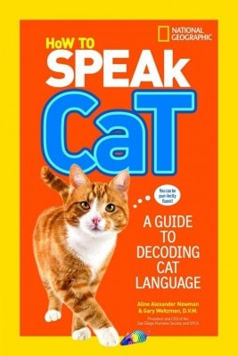 how-to-speak-cat