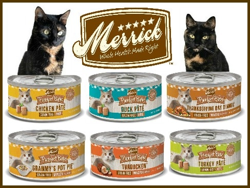 merrick-cat-food-review