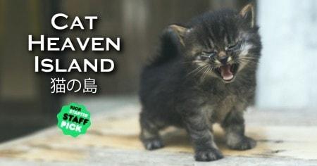 cat-island-Japan