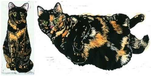 Tortie Girls cover