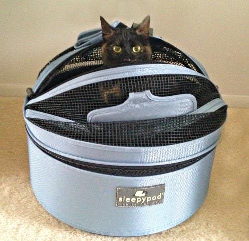 Sleepypod Cat Review