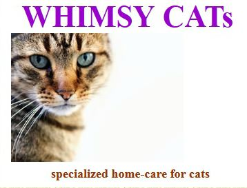 Whimsy-Cats-cat-sitting