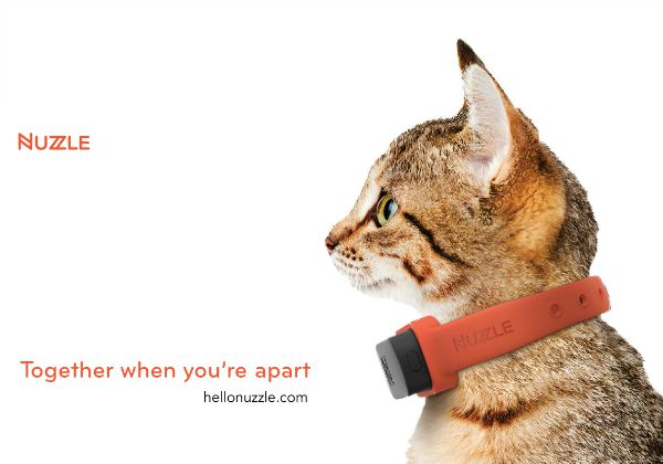 Nuzzle-GPS-tracking-collar