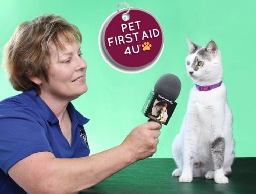 Arden-Moore-pet-first-aid