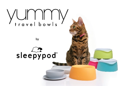 travel-bowls