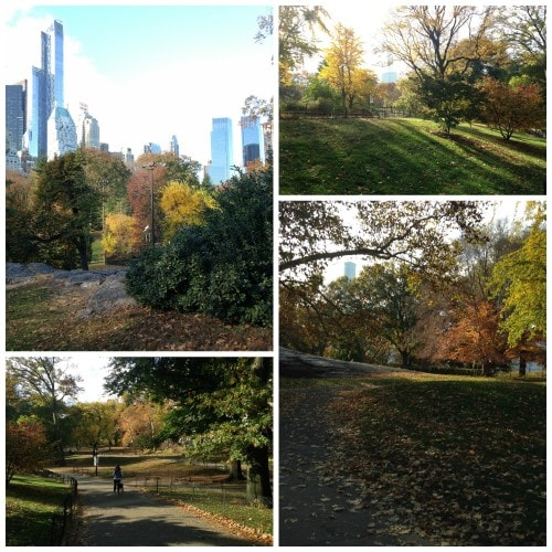 Central-Park-fall-colors