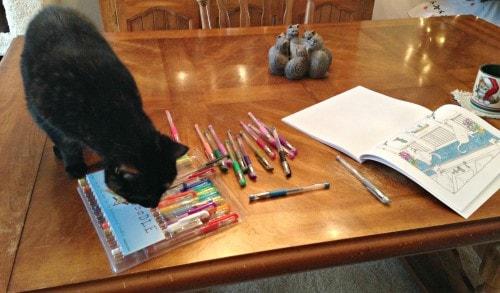 cat-coloring-book