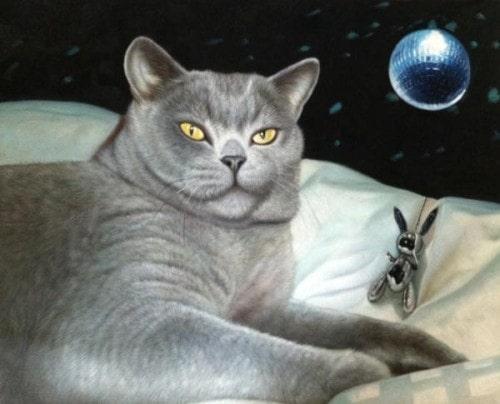 cat-art-show