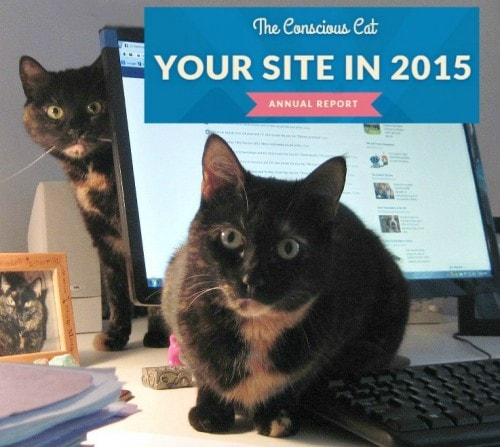 Conscious-Cat-annual-report