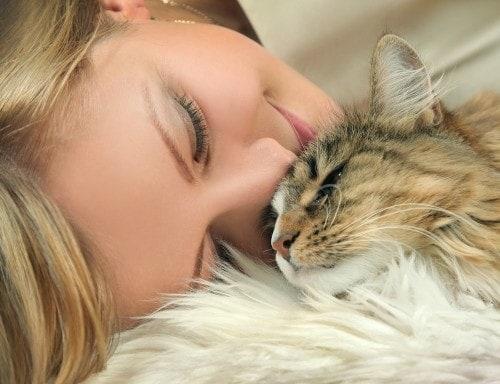 cat-immunocompromised