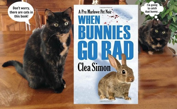 Bunnies Go Bad cover with girls