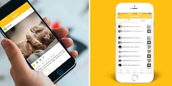 catastic-app