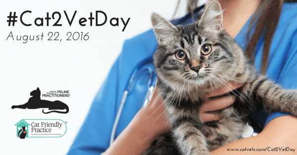 take-your-cat-to-the-vet-day