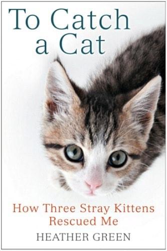 to-catch-a-cat