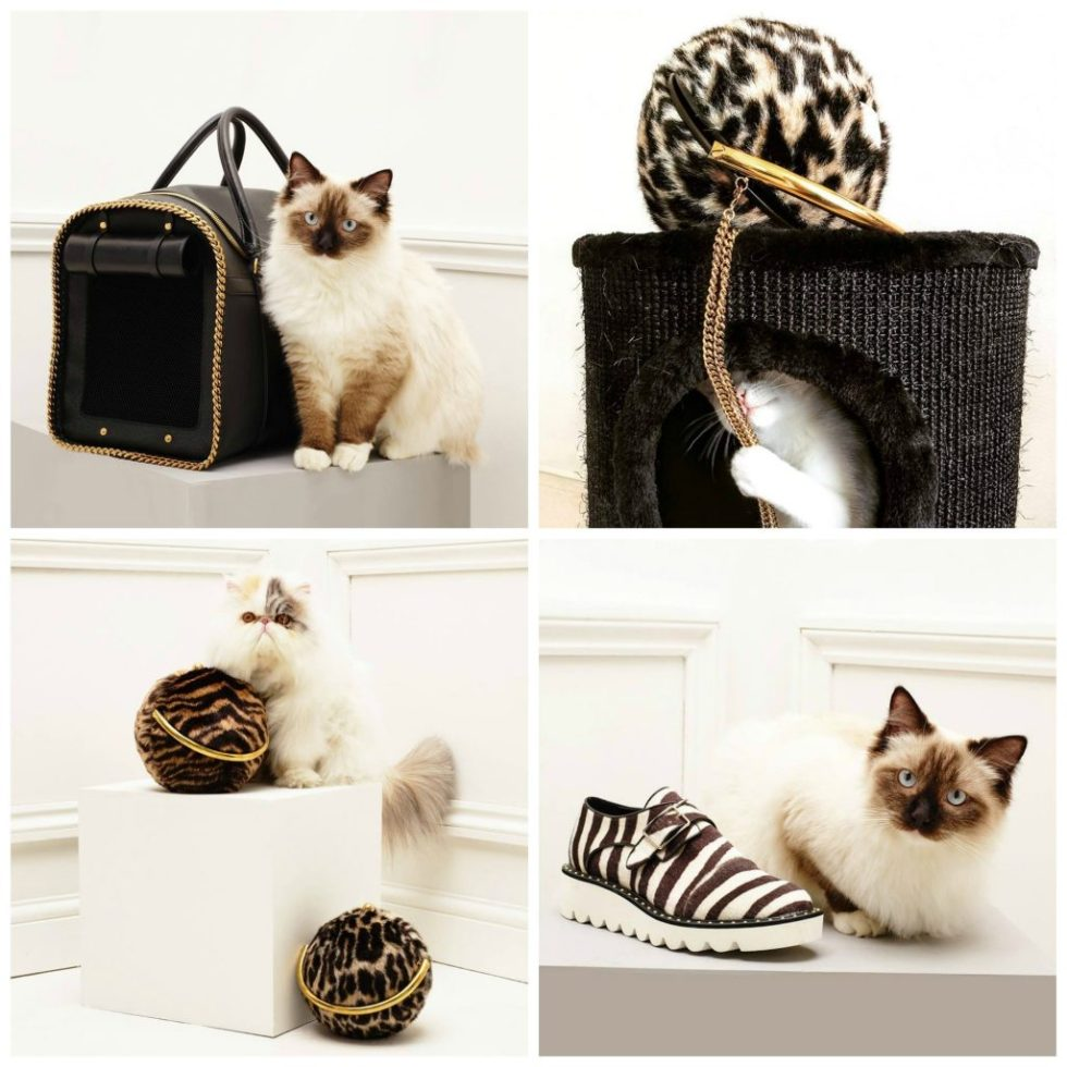 Stella-McCartney-cat-accessories