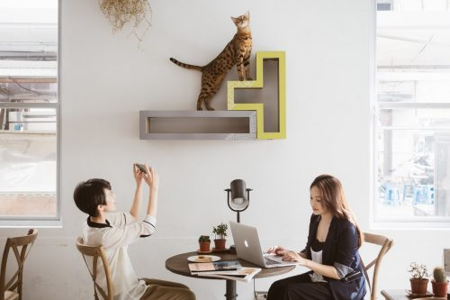 katris-cat-furniture