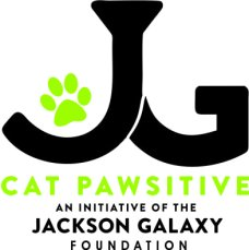 cat-pawsitive
