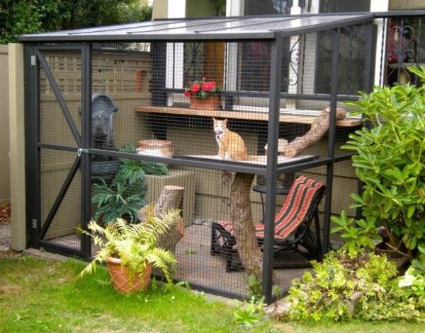 cat-catio-outdoor-enclosure