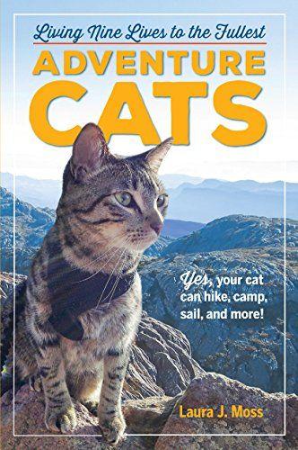 adventure-cats