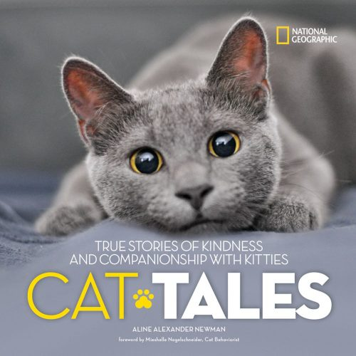 Book Review: Cat Tales by Dr  Sharon Eisen and Linda Francese