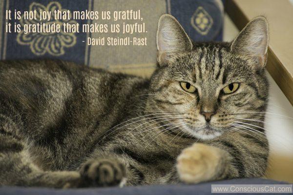 Sunday-quotes-joy-gratitude