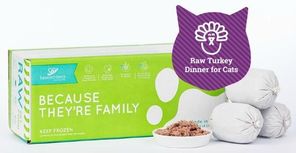 balanced-blends-raw-turkey-dinner