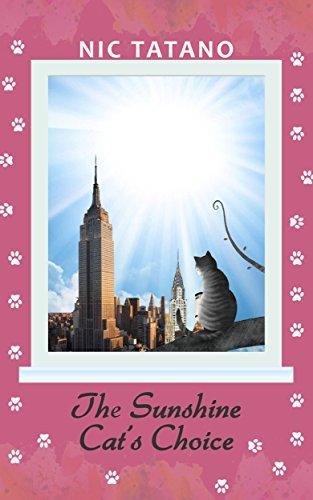 the-sunshine-cat