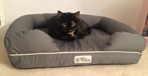 petfusion-cat-bed