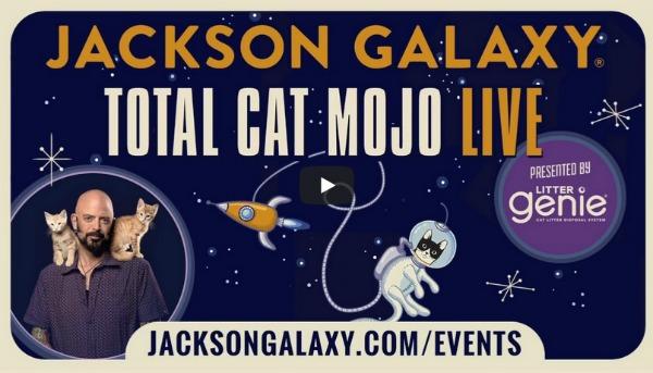 Jackson-Galaxy-Total-Cat-Mojo-Live