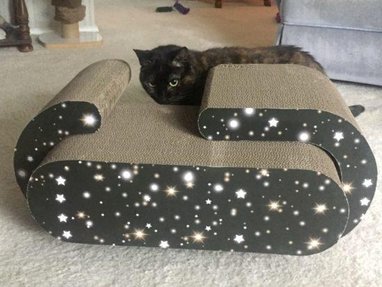 jackson-galaxy-scratcher
