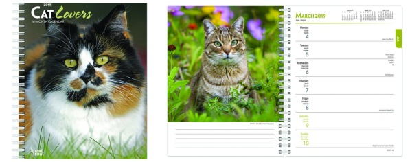 cat-lovers-engagement-calendar