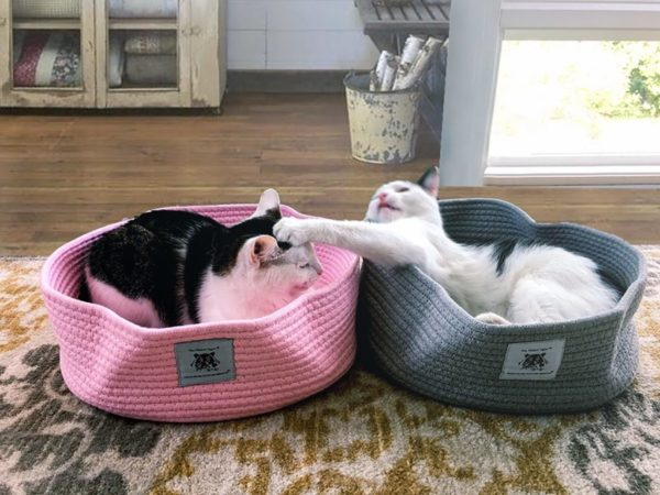 pink_and_Gray_Cotton_beds_2000x