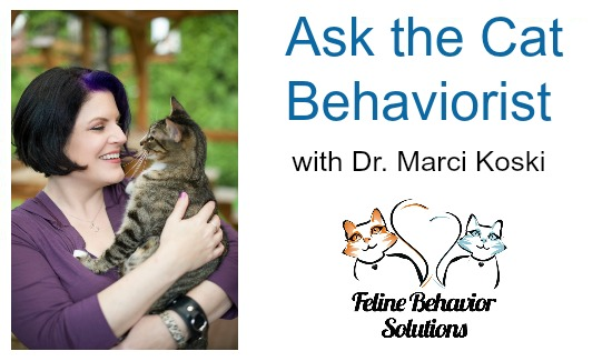 Ask-the-Cat-Behaviorist-Marci-Koski