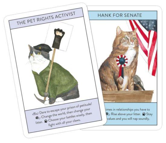 cat-gurus-cards