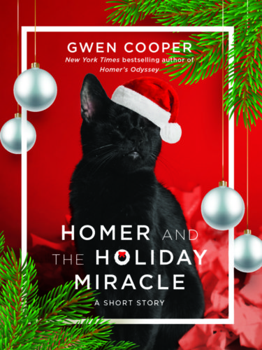homer-holiday-miracle-gwen-cooper