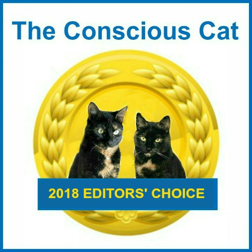 best-cat-products-2018