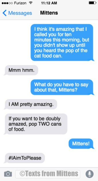 text-from-mittens