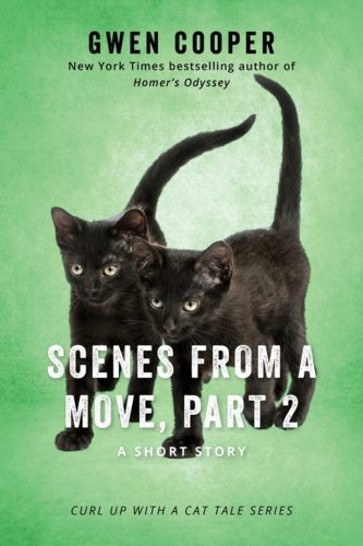 scenes-from-a-move