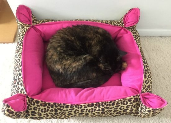 cat-sleeping-leopard-print-cat-bed
