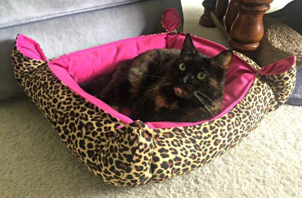 divas-leopard-print-cat-bed