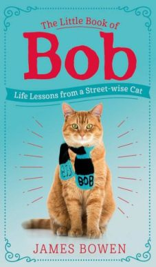 the-little-book-of-bob