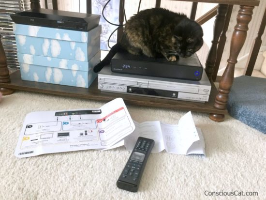 cat-cable-box