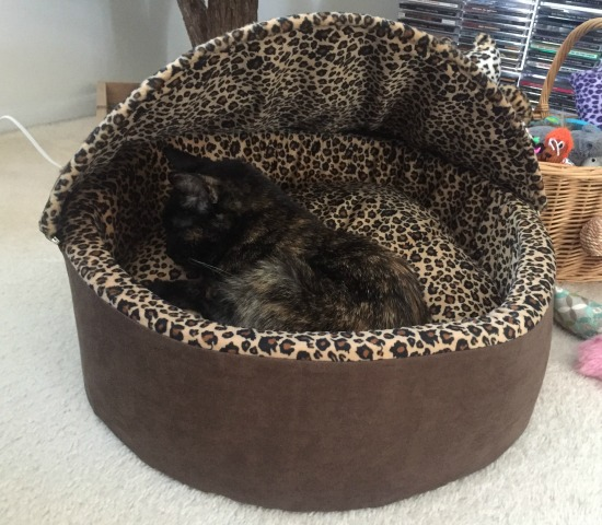 hooded-heated-cat-bed